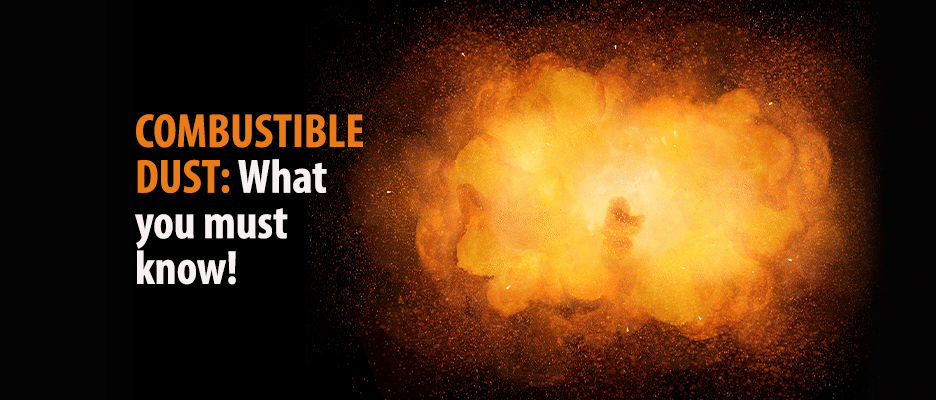 COMBUSTIBLE DUST Flammable