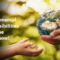 Environmental Responsibilities Everyone Must Know